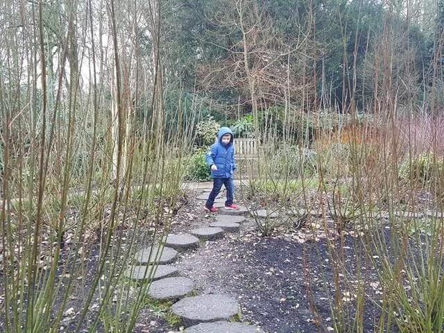 stepping stones in mottisfont winter garden