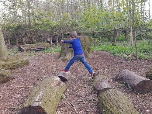 jumping logs on the woodland walk at Upton House