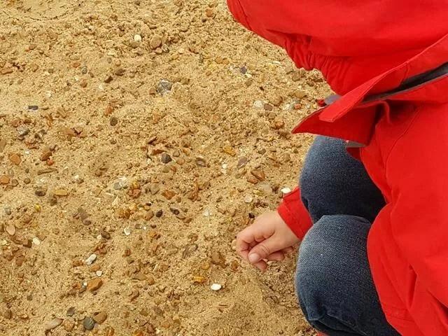 beach investigations