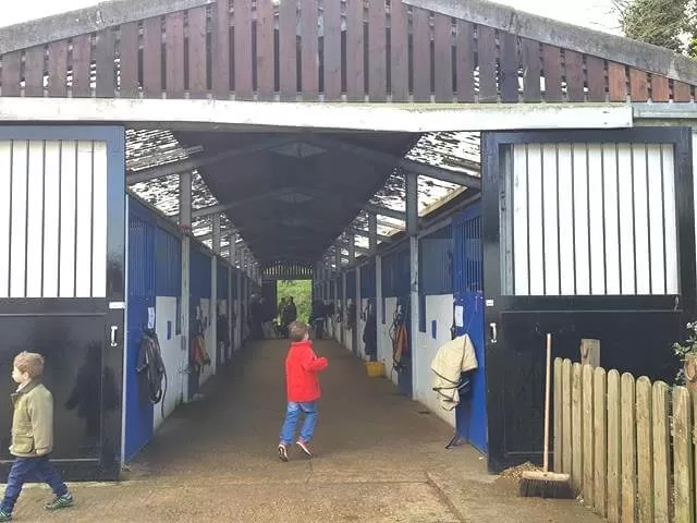 checking out the training stables