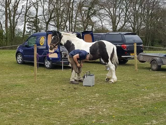 farrier display