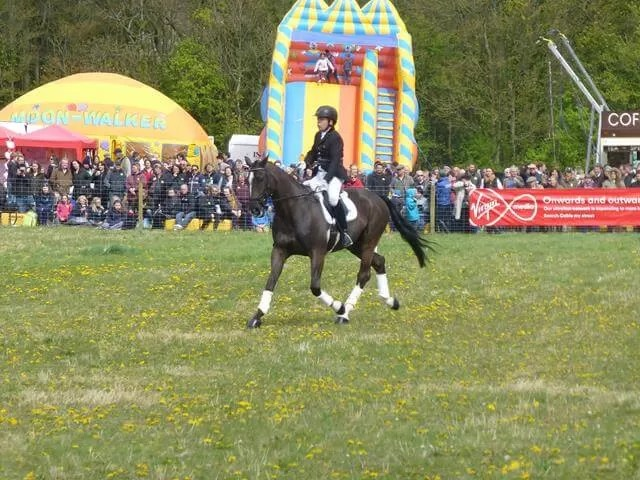 riding for the disabled dressage display
