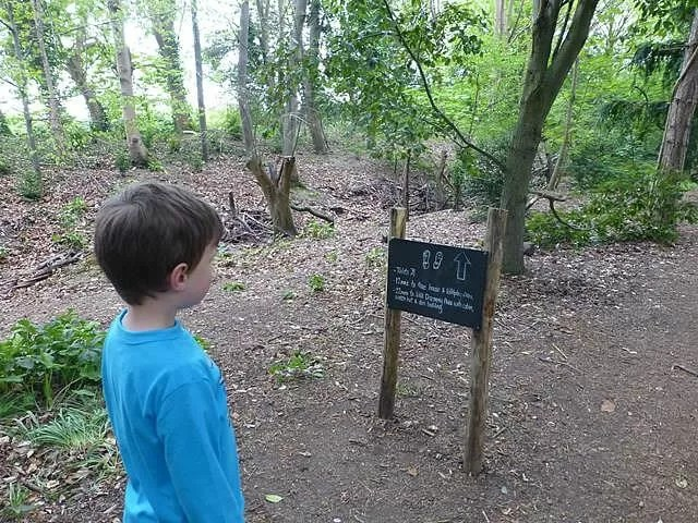 following the woodland trail
