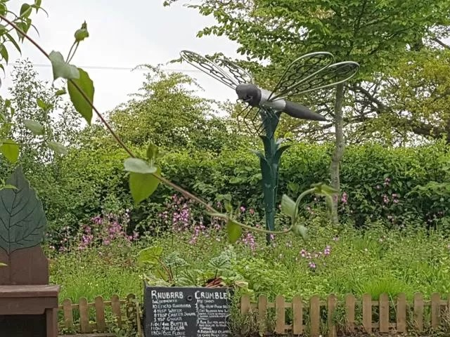sensory garden at Ryton Pools Country Park