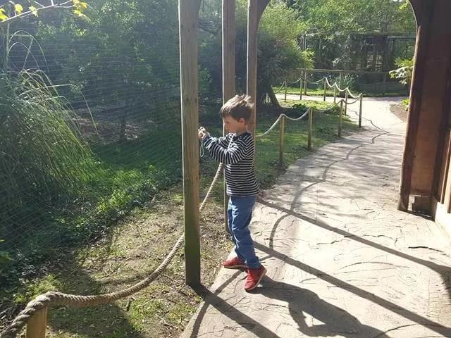 taking photos at amazonia zoo