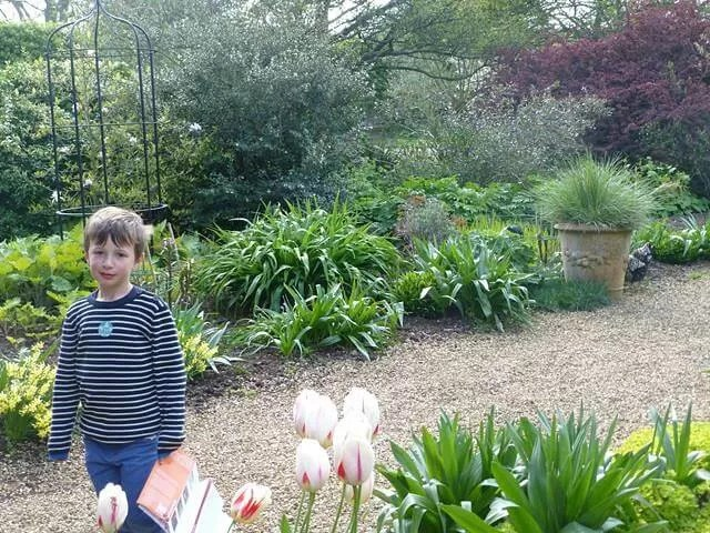 walking in the walled garden