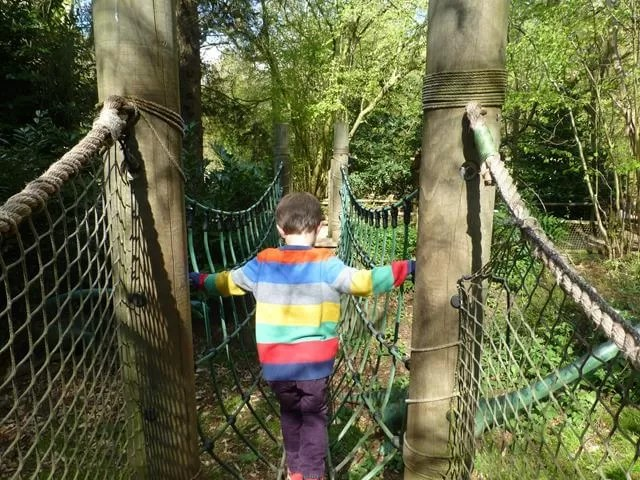 walking the net rope bridge