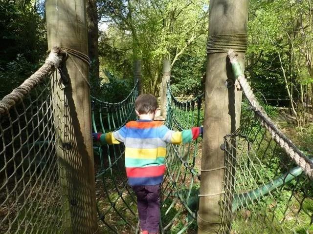 walking the net rope bridge