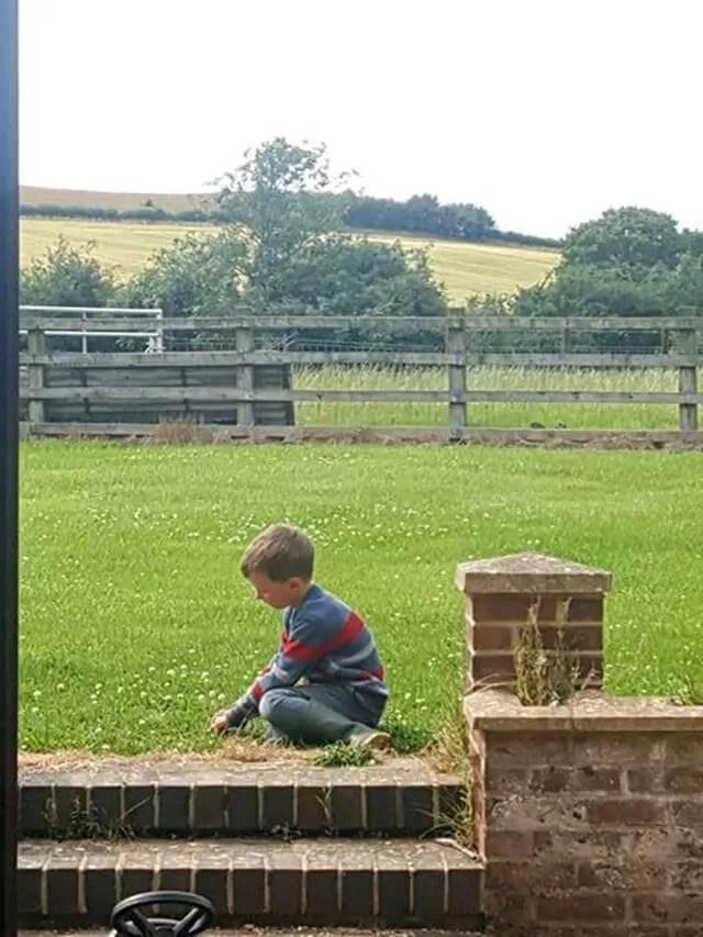 cutting grass in the garden
