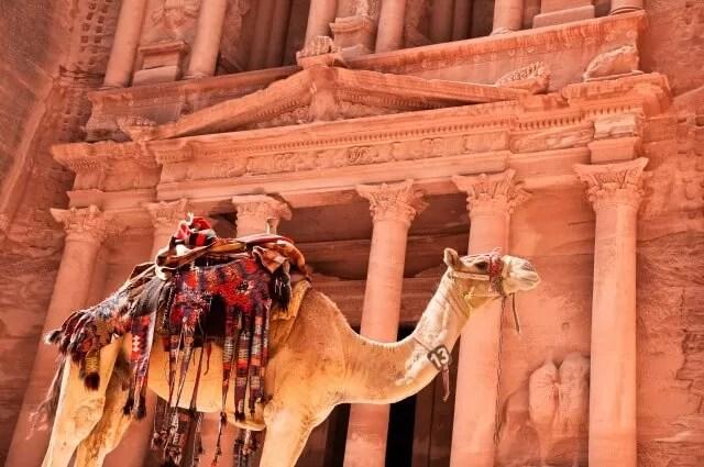 Jordan and camel