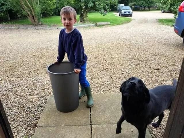 new recycling bin arrival