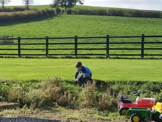 cuttingthe scissorsgrass in the garden with