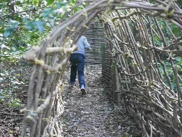 hazel tunnel run