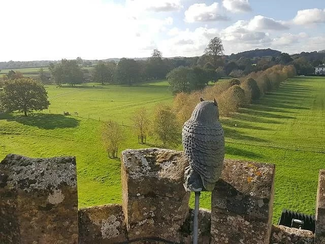 own sculpture overlooking coughton court estate