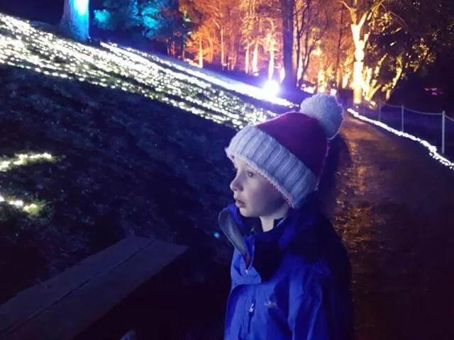 blenheim palace christmas 20172