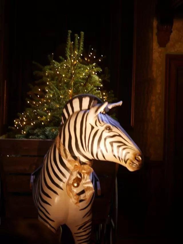 zebra at waddesdon