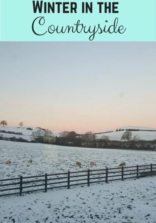 winter in the countryside - Bubbablue and me
