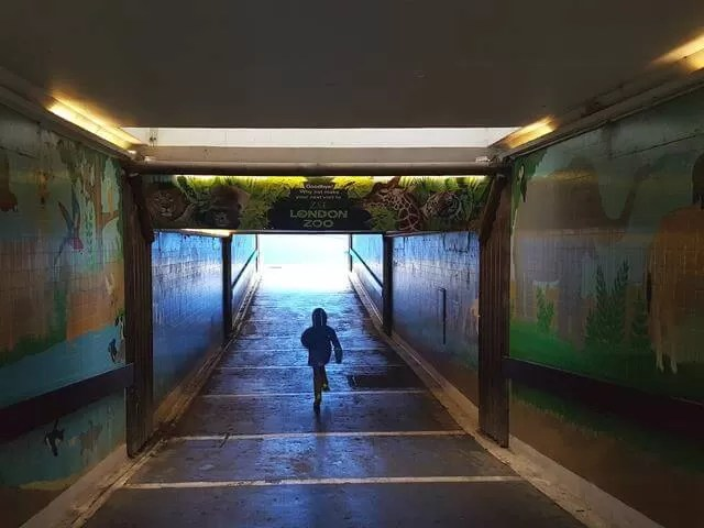 leaving ZSL whipsnade through the tunnel