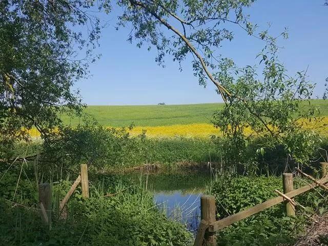 pretty views at stnawick lakes