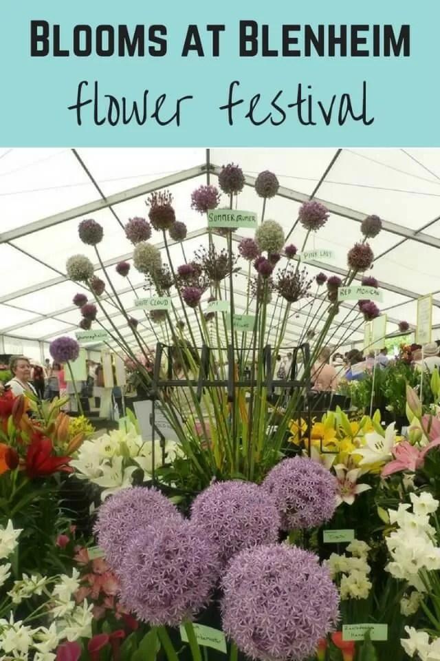 Blenheim flower festival - Bubbablue and me