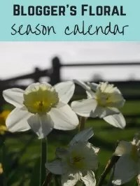 seasonal flower calendar