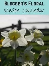 seasonal flower calendar