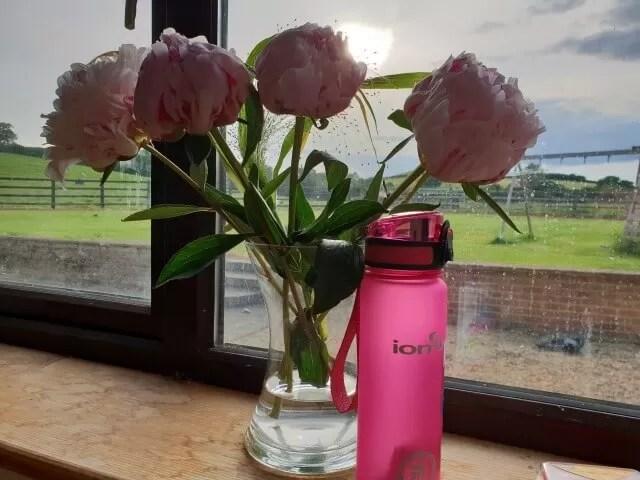 ion8 water bottle (1)