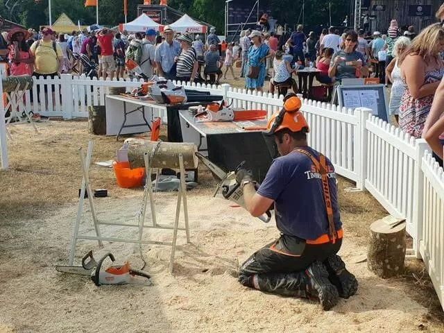 stihl chainsaw carving