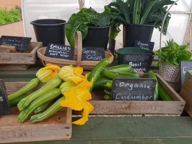 hanbury hall garden vegetables
