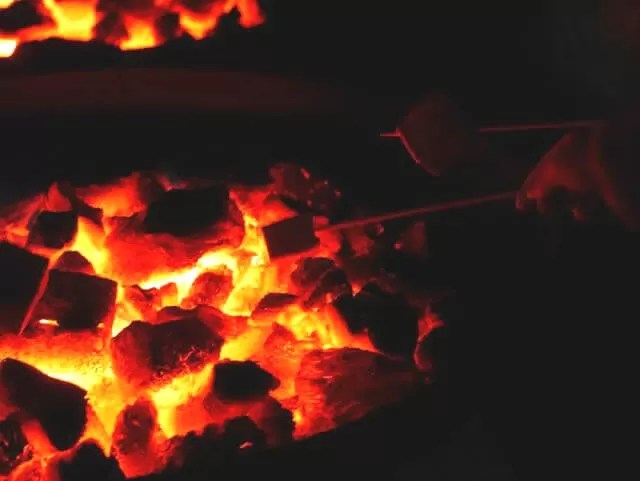 marshmallows over the fire