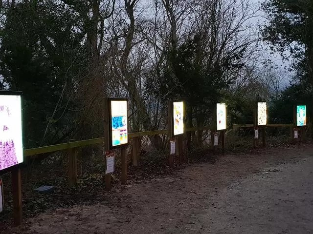 schools art lit up on a trail