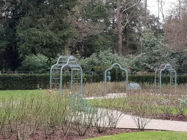 rose garden walkway in winter