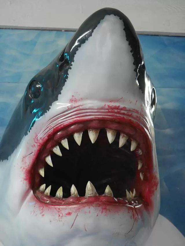 shark head model
