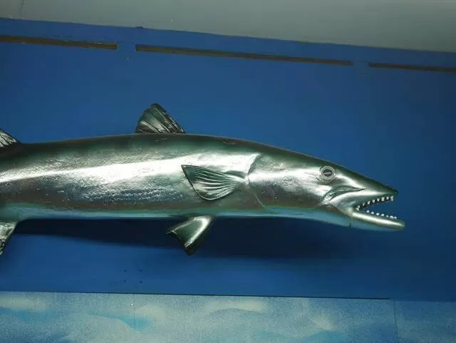silver metal model of a shark