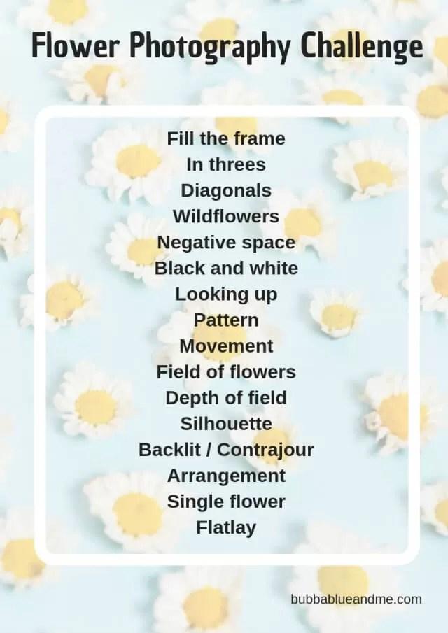 flower photography challenge