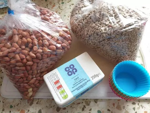 bird feed items