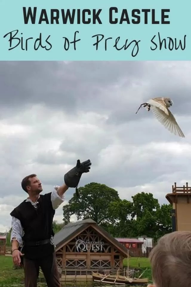 Warwick castle falconers quest - Bubbablue and me