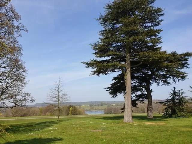 lake at castle howard