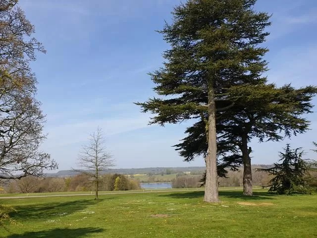 lake at castle howard