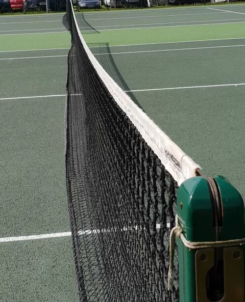 team tennis matches and a tennis net