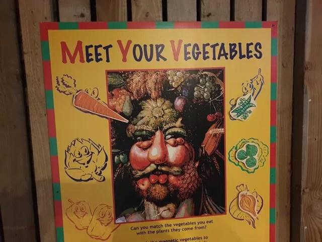 vegetable game for children