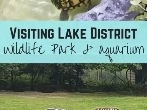 Lake district wildlife park and aquarium - Bubbablue and me