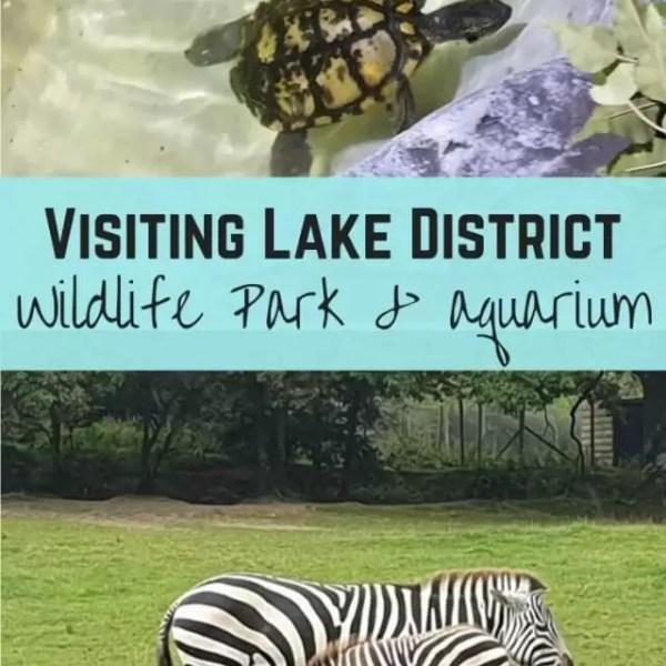 Visiting Lake District Wildlife Park and Lakes Aquarium