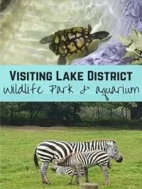 lakes aquarium and wildlife park
