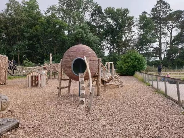adventure playground at wildlife park