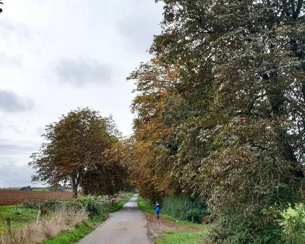 Project 52 2019 week 41 – Conker Alley