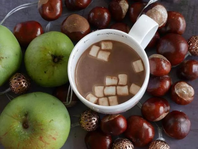 hot chocolate and marshmallows in autumn with conkers and apples