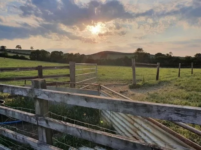 leading lines of farm gates and fields under a sunset