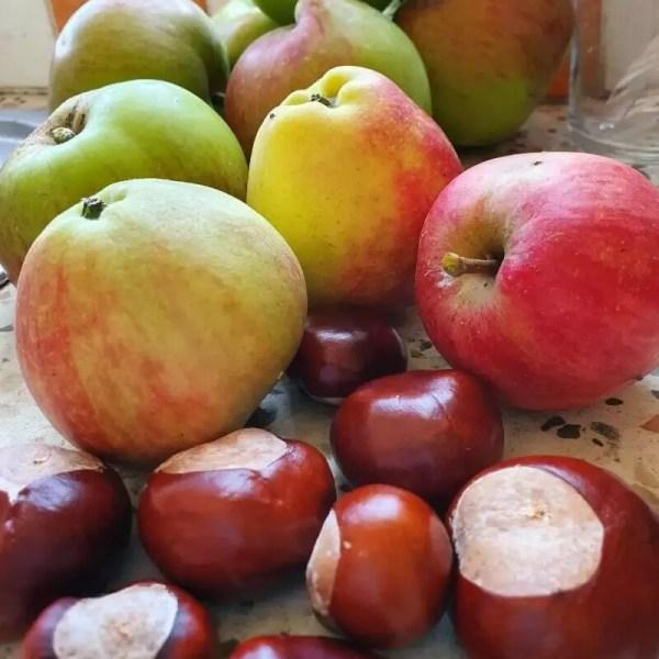 Project 52 2020 week 38 – autumn harvest