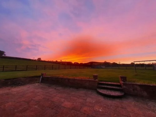gorgeous red sunset widescreen view in garden